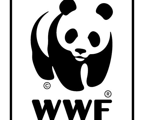 WWF_Logo_framework-01